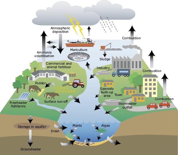 Sustainable Development1g